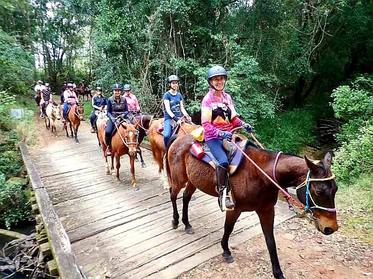 Rainbow Beach, Bush & Cattle Ride, Queensland, Australia - Globetrotting horse riding holidays